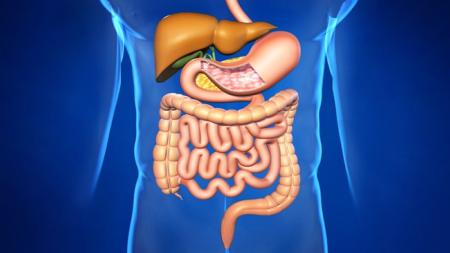 Лечение заболеваний органов пищеварения на ессентукском курорте